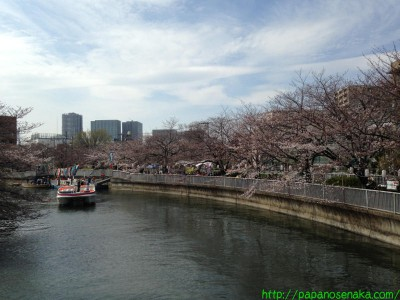 2014_03_29 04 お江戸深川さくらまつり