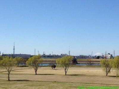 2014_03_22 02 新葛飾橋からスカイツリーと富士山を見る