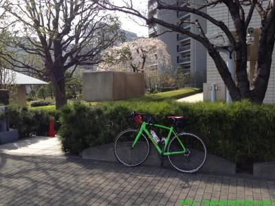 2014_03_29 07 某社裏で枝垂桜を背景に