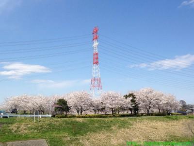 2014_04_05 03 運河河口公園