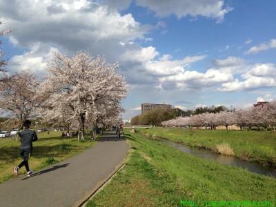 2014_04_05 08 大堀川リバーサイドパーク