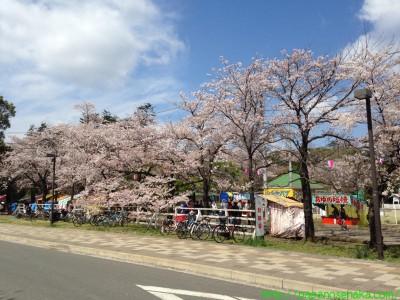 2014_04_06 03 清水公園