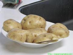 2011_02_13 馬鈴薯2.JPG